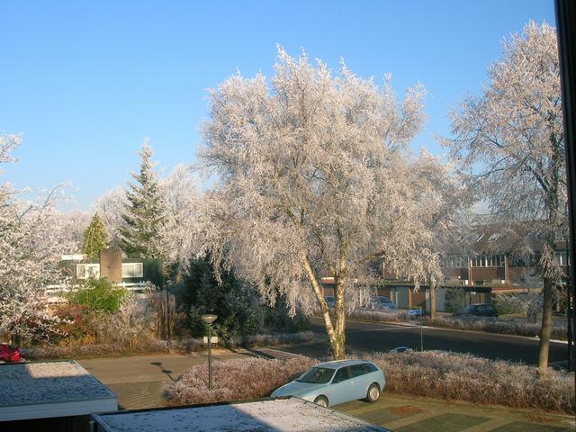 Saturday, December 22, 2007