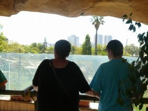 636 Jardim Zoológico