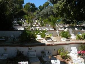 640 Jardim Zoológico