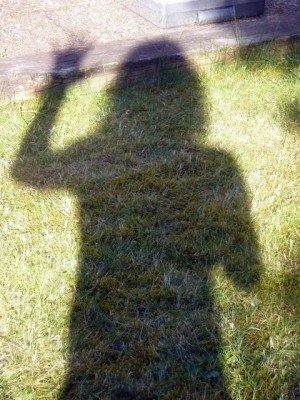 shadow dancing in the garden - June 1, 2009