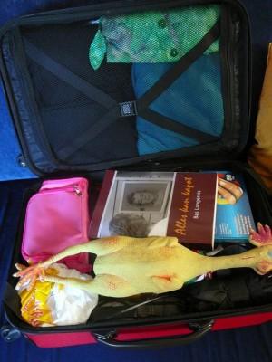 001 081113 Thursday - bazbos suitcase