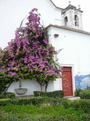 080 bij de Igreja de Santa Luzia