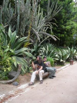 107 Jardim da Estrela