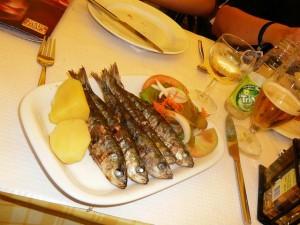 224 bazbo's lunch - sardines