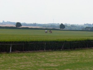 265 view on the Galop-Rennbahn