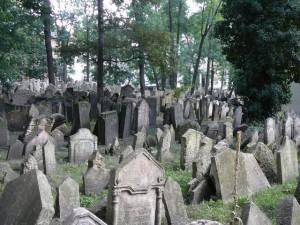 354 Oude Joodse Begraafplaats
