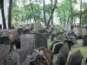 355 Oude Joodse Begraafplaats