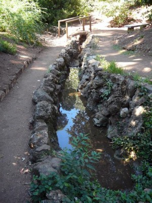 433 Jardim Agricola Tropical