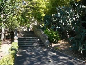 438 Jardim Agricola Tropical