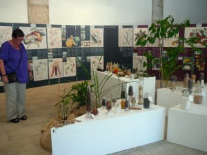 451 Jardim Agricola Tropical