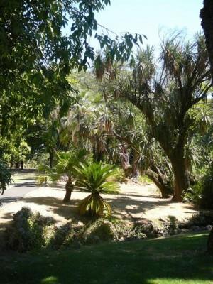 456 Jardim Agricola Tropical