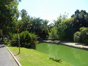 460 Jardim Agricola Tropical