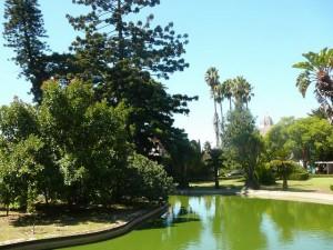 461 Jardim Agricola Tropical