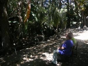 465 Jardim Agricola Tropical