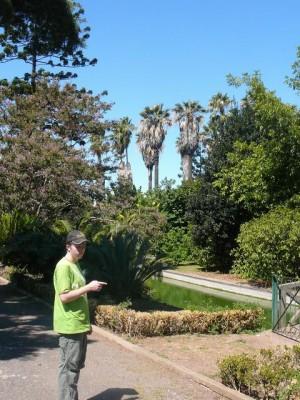 472 Jardim Agricola Tropical