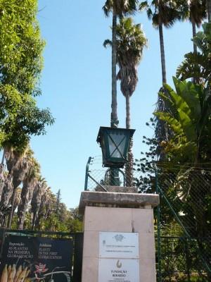 479 Jardim Agricola Tropical