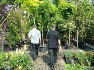 Marc en Luuk in de schaduwkas