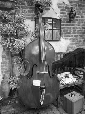 Martin's bass