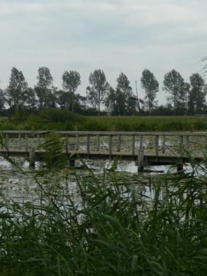zicht vanaf Fort Wierickerschans