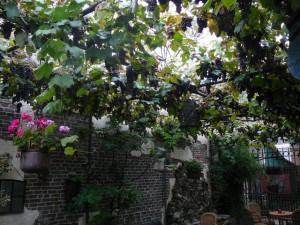 Art Café 'Sam Sam' garden