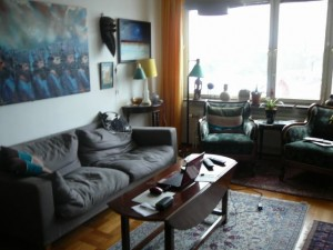 016 au3s appartment living room