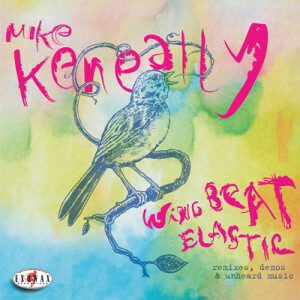 mike keneally wing beat elastic