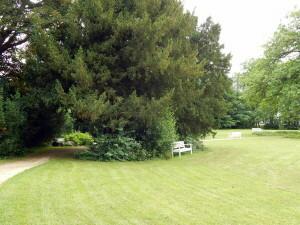 051 Palace park