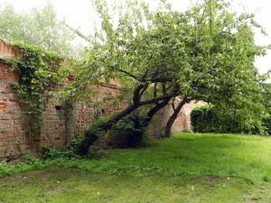 052 Klostermauer