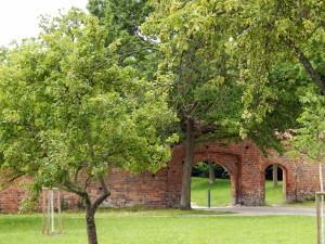 074 Klostergarten