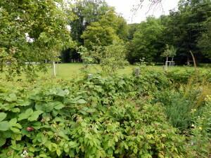 082 Klostergarten