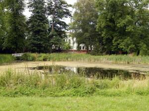 103 Münstergarten
