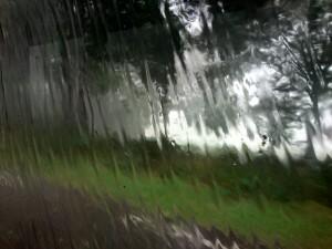 140728 13 beetje regen