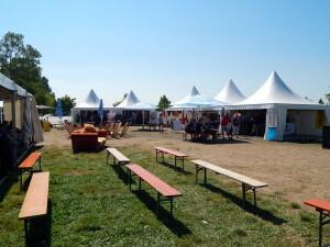 377 festival area