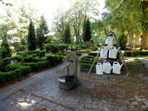 844 Bad Doberan Friedhof