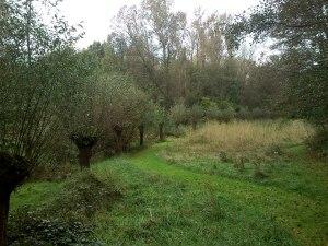 013 141015 Matenpark - Heemtuin