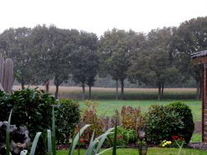 079 regen