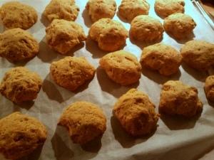 23 141001 pompoenkoekjes - uit de oven