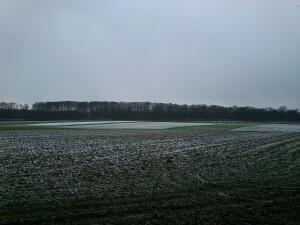 009 150129 Schaarsbergen