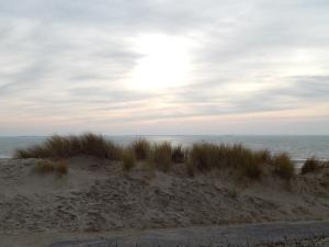 153 duinen bij Nollestrand