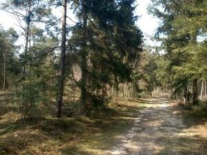 054 150409 Schaarsbergen