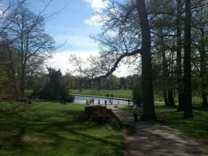 13 park Sonsbeek Arnhem