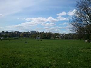 19 park Sonsbeek Arnhem
