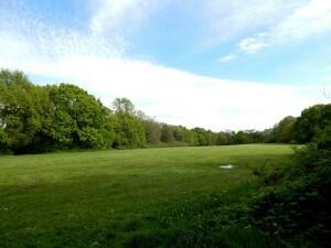 0810 Scholes Park