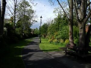 0819 Memorial Park