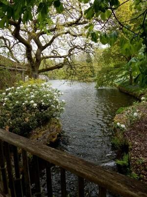 1237 Lyme Garden