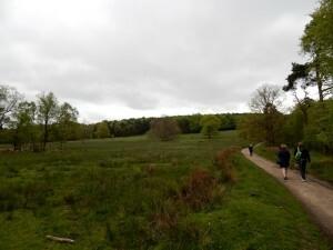 1329 Lyme Park