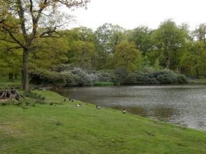 1350 Lyme Park