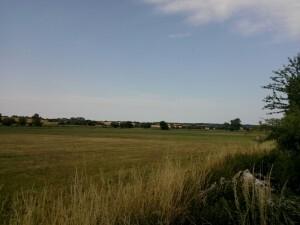 0597 150717 vrijdag - in de velden tijdens hardlopen