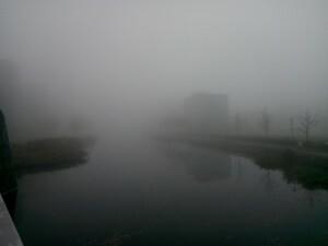 151102 135 langs het kanaal