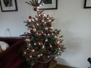 151211 349 de kerstboom staat